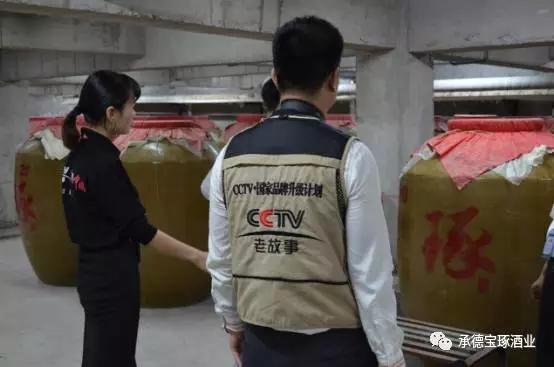 《信用中国》栏目组制片主任杨杰与承德琢酒总经理张雅丽签订合作协议